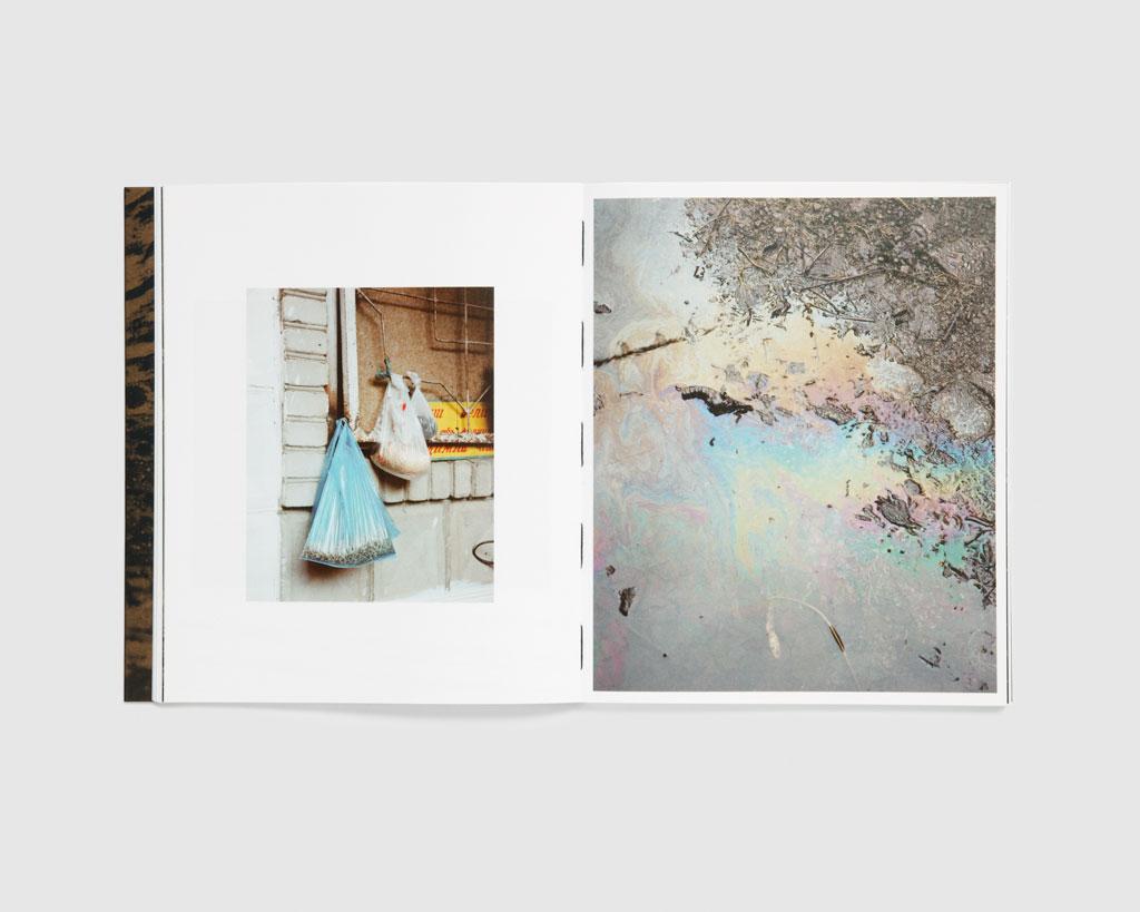 Horsehead Nebula — Matthieu Litt