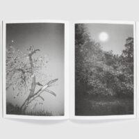 Magnolia — Iphygenia Dubois and Lore Horré
