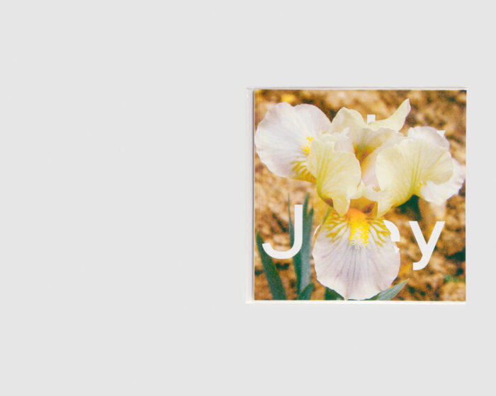 Stéphanie Lagarde — IRIS Number 2: Jolly Joey