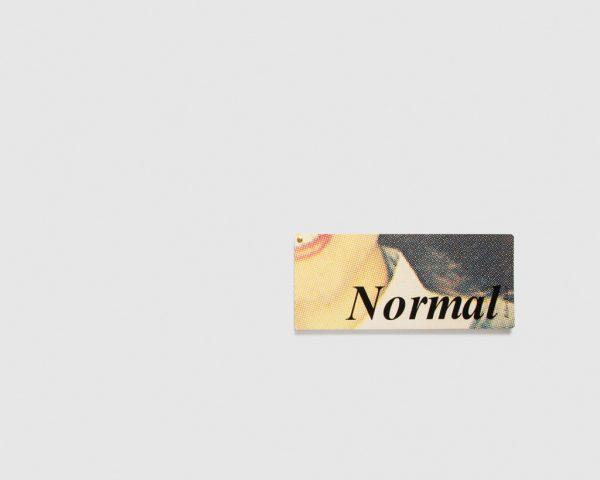 Katrin Kamrau — Normal - Robert Olson